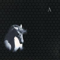 - Белая Лошадь