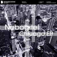 Nebogitel - Welcome To Chicago (Original Mix)