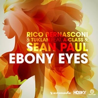 Rico Bernasconi - Ebony Eyes (DJs from Mars Remix)