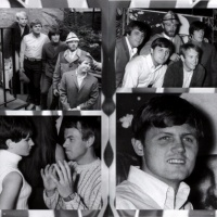 The Beach Boys - Wally Heider Studios (Album)