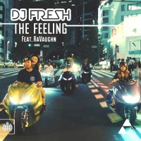 Dj Fresh - The Feeling (Single)