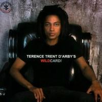 Terence Trent D'Arby - Terence Trent D'Arby's / Sananda Maitreya's Wildcard (Album)