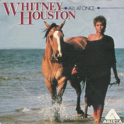 Whitney Houston - All At Once (Single)