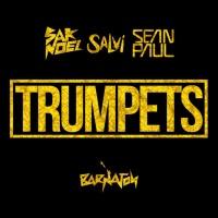 Sak Noel - Trumpets (Extended Mix)