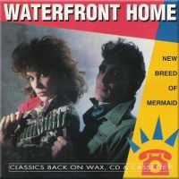 Waterfront Home - Take A Chance