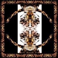 88 Ultra - Para Bellum (Album)