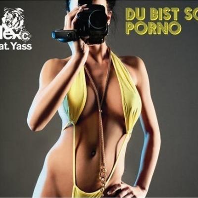 Alex C. feat. Y-Ass - Du Bist So Porno (Maxi-Single) (Compilation)