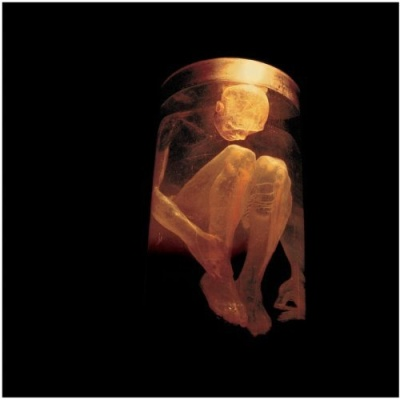 Alice In Chains - Nothing Safe: The Best Of The Box