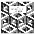 JSG - Perfect Numb (Original Mix)