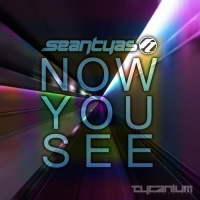 Sean Tyas - Now You See