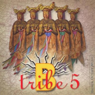 B-Tribe - Demasiado