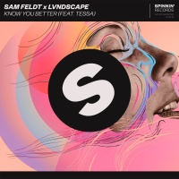 Sam Feldt - Know You Better
