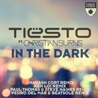 In The Dark (Pedro Del Mar & Beatsole Remix)