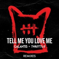 Galantis - Tell Me You Love Me (Pat Lok Remix)