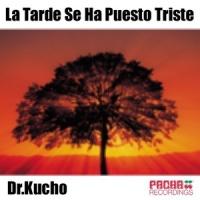 Dr. Kucho! - La Tarde Se Ha Puesto Triste