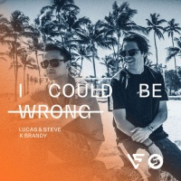 Lucas & Steve - I Could Be Wrong