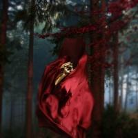Claptone - Under the Moon (Lee Foss Remix)