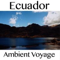 Fly Project - Ambient Voyage: Ecuador