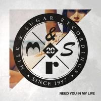 Milk & Sugar - Need You in My Life (Superlover Remix)