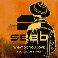 Seeb - What Do You Love - Single