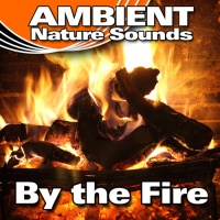 Ambient Nature Sounds - Forest Fire Engulfing Everything In Its Path