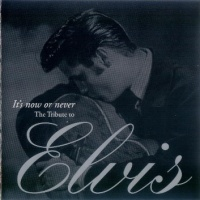 Tribute To Elvis (It's Now Or Never)