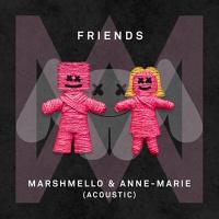 Marshmello - Friends (Acoustic Mix)