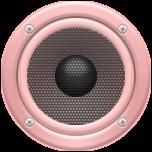 Radio-Zvit